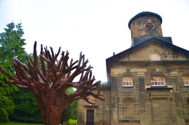 Iron tree by Ai Wei Wei - in front of chapel at YSP